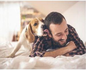 Advantages of Adopting a Pet